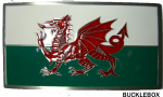 WELSH BELT BUCKLES